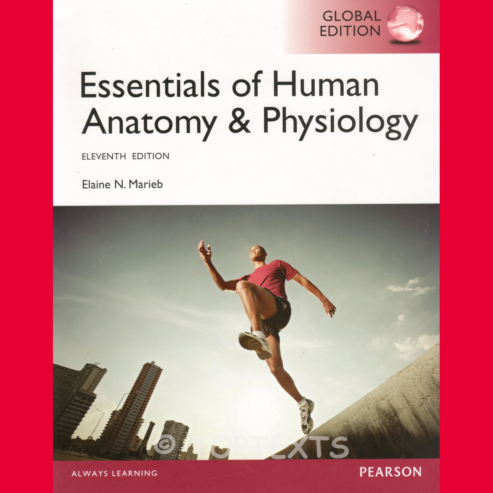 Essentials Of Human Anatomy And Physiology Textbook : Manual De ...